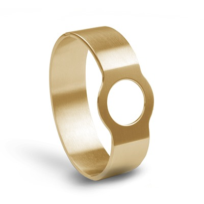 stainless steel IP gold